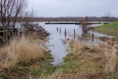 Hoog Water in de Maas